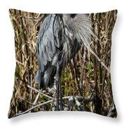 Who Is There - Great Blue Heron Throw Pillow