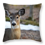 Who Is There Throw Pillow