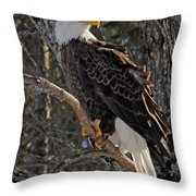 Who Ruffled The Feathers Throw Pillow