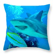 Who Said Sharks Were Mean Throw Pillow