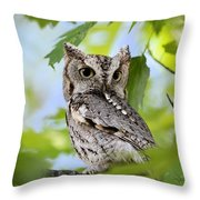 Who Was That Throw Pillow