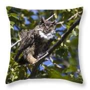 Who Who Are You Throw Pillow