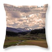 Whoever Believes Throw Pillow