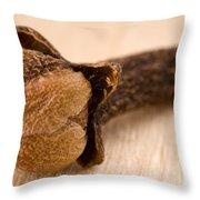 Whole Clove Throw Pillow