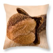 Whole Clove Throw Pillow