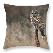 Whooo Goes There Throw Pillow