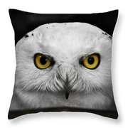 Whoooo's There?  Throw Pillow