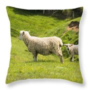 Who's Coming To Dinner Throw Pillow
