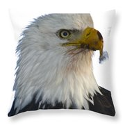 Who's Nexted ? Throw Pillow