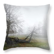 Who's Sorry Now Throw Pillow by Diana Angstadt