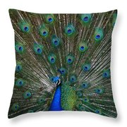 Who's Your Daddy ? Throw Pillow