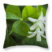 Whtie Clover Flower Throw Pillow