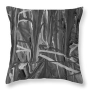 Why Abs Throw Pillow