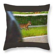 Why Did The Bobcat Cross The Road Throw Pillow