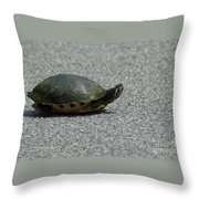 Why Did The Turtle Cross The Road Throw Pillow