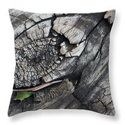 Why Knot 1 Throw Pillow