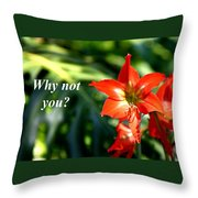 Why Not You Throw Pillow