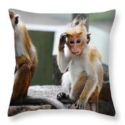 Why They Are Calling Me Socrates ? I Have To Think About Throw Pillow