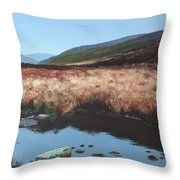 Wicklow Bogscape Throw Pillow