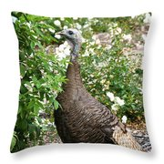 Wide Eyed Wild Throw Pillow