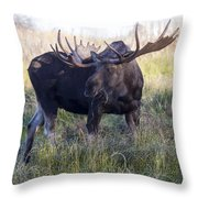 Wide Guy Throw Pillow