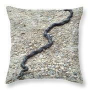 Wiggle Throw Pillow