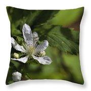 Wild Alabama Blackberry Blossom Throw Pillow