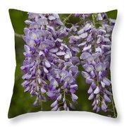 Wild Alabama Wisteria Frutescens Wildflowers Throw Pillow