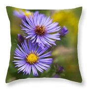 Wild Aster Trio Throw Pillow