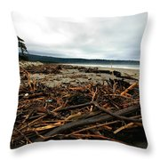 Wild Beach New Zealand Throw Pillow