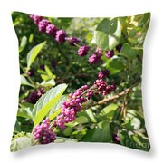 Wild Beautyberry Bush Throw Pillow
