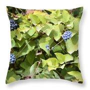 Wild Berries Throw Pillow