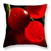 Wild Berries Of The Wetlands 4 Throw Pillow