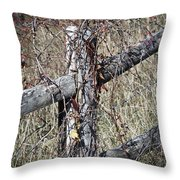 Wild Berries On Fence Throw Pillow