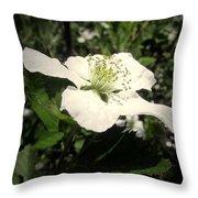 Wild Blackberry Blossom Throw Pillow