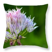 Wild Blue - Chive Blossom Throw Pillow by Adam Romanowicz