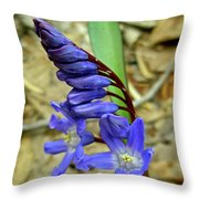 Wild Blue Hyacinth - Camassia Cusickii Throw Pillow
