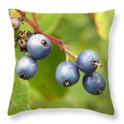 Wild Blueberries Throw Pillow