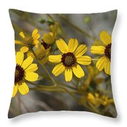 Wild Brittle Bush Flowers Throw Pillow
