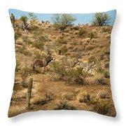 Wild Burros Throw Pillow
