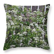 Wild Caraway And Old Fence Throw Pillow