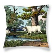 Wild Cattle Of Britain Throw Pillow