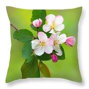 Wild Cherry Blossoms Throw Pillow