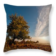 Wild Cherry Throw Pillow by Davorin Mance