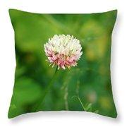 Wild Clover Throw Pillow