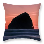 Wild Color Throw Pillow
