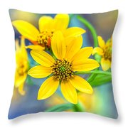 Wild Confederate Daisies On Arabia Mountain - North Georgia Throw Pillow