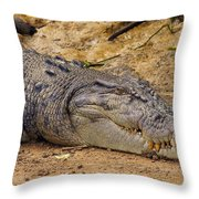 Wild Croc #2 Throw Pillow