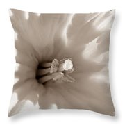 Wild Daffodil Throw Pillow