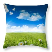 Wild Daisies In The Grass With A Blue Sky Throw Pillow